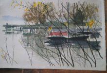Ash Bridges Bay Boat